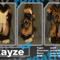 Kayze V2 Body