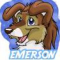 Emerson Collie